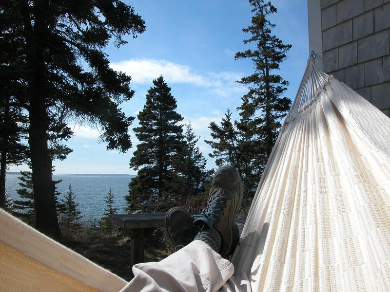 View from the hammock on the deck