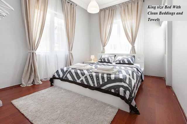 New & stylish apartment in the center-Taksim, holiday rental in Gaziosmanpasa