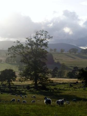 Lorbottle vistas