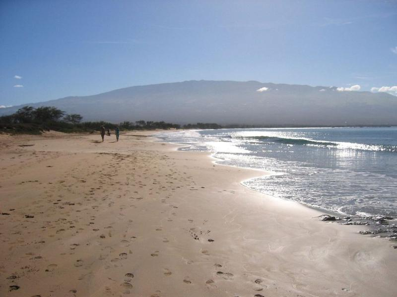 Walk for miles to Maalaea Bay from Sugar Beach across the resort