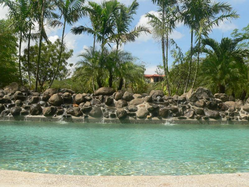 Pool with rock wall fountain
