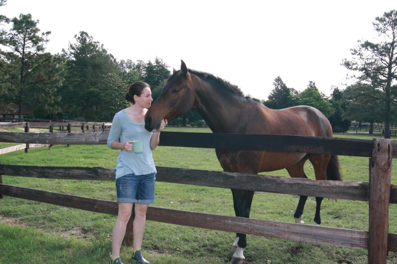 10 acre horse farm with beautiful horses, chickens and dogs.