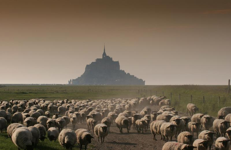 Le Mont St Michel - A short drive away.
