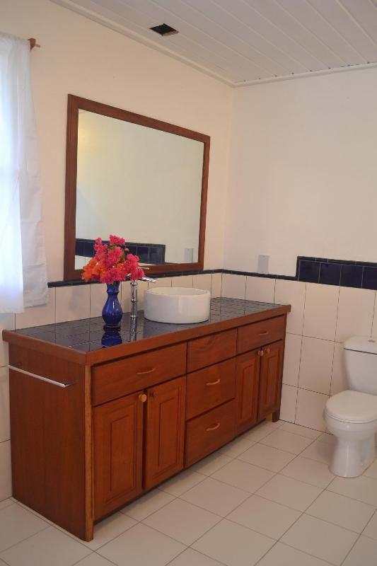 Bathroom with Shower & Washing Facilities