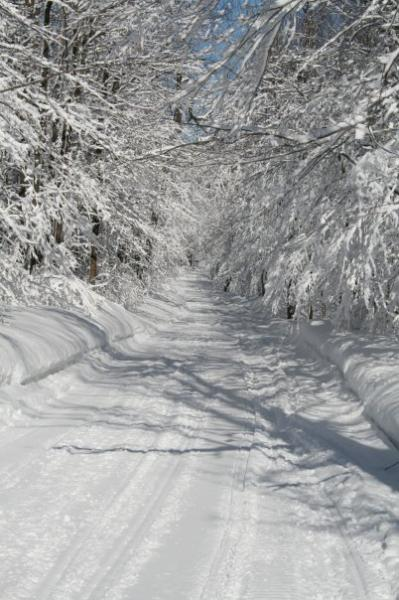 Tontarski Road - A groomed snowmobile trail
