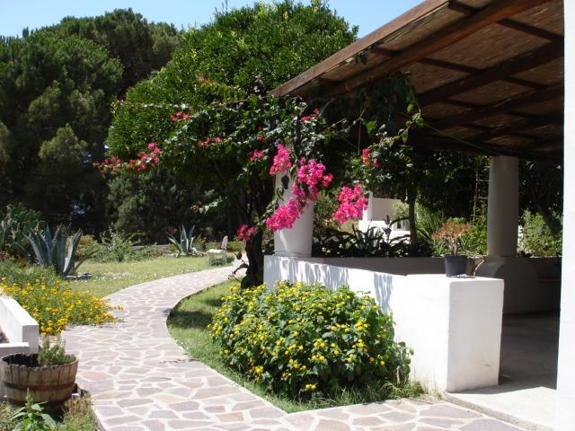 Quiet apartment surrounded by nature in Salina, vacation rental in Aeolian Islands