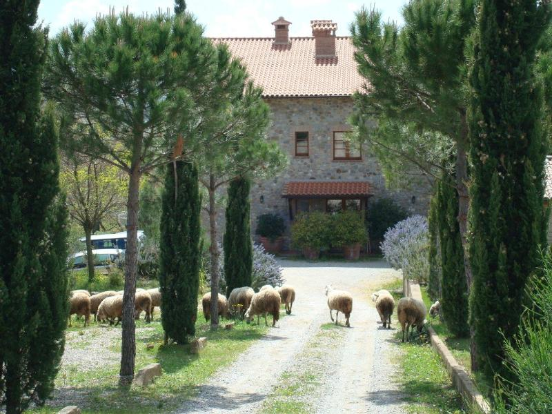 Coming up to the apartment Citta della Pieve, at the back of the house