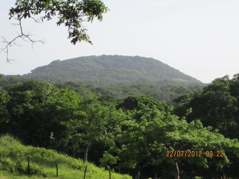 Pumpkin Hill view