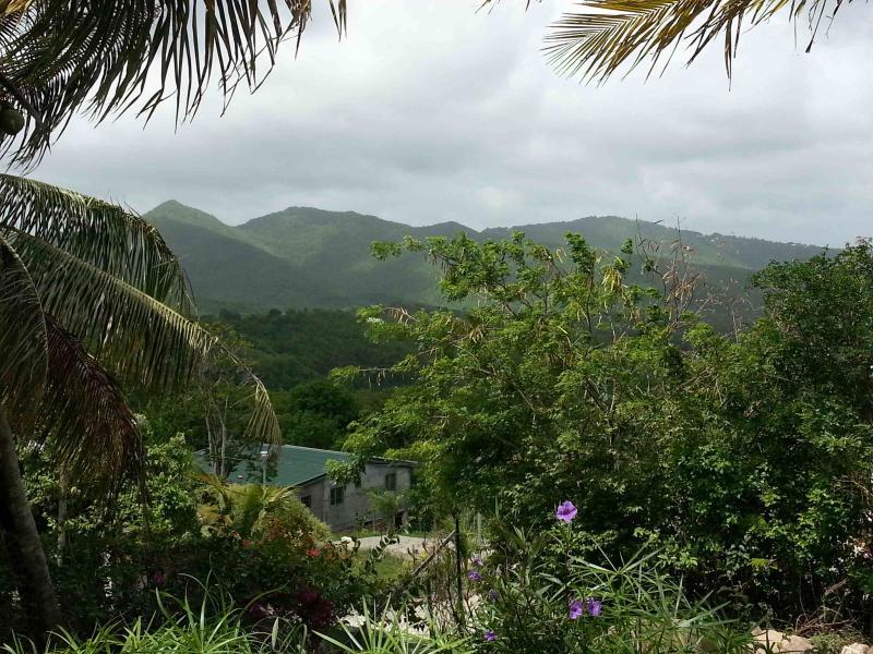 Vue montagnes / Mountain view