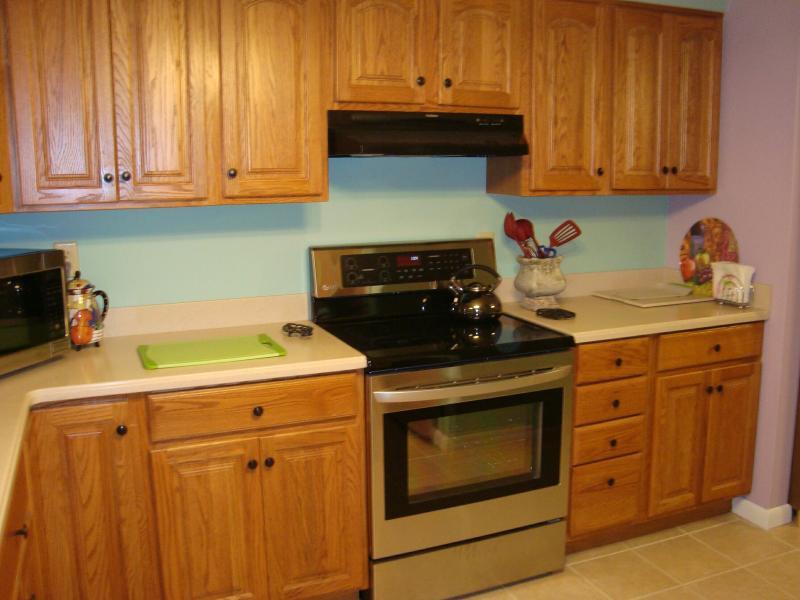 Acero inoxidables electrodomésticos LG; montón de espacio en el mostrador/gabinetes; colores inspirados en vajilla pintada a mano