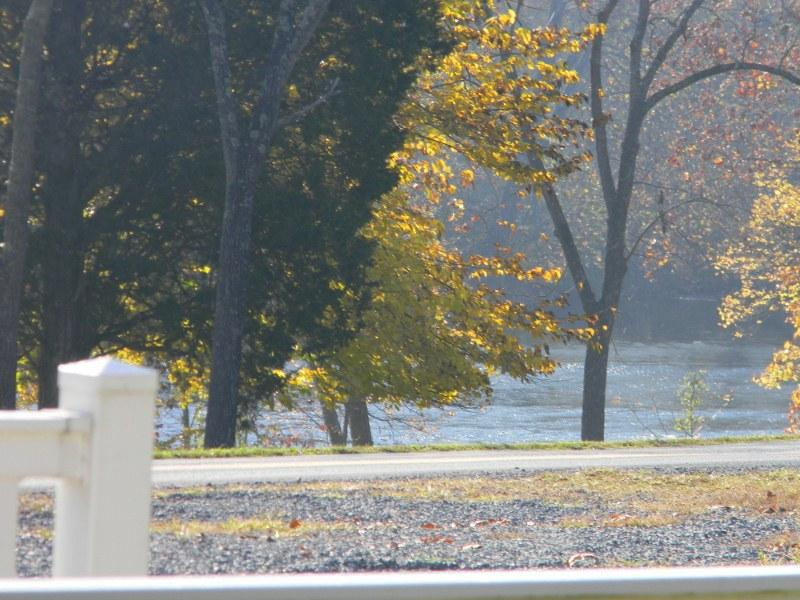 view of Shenandoah River across a secondary roadway from cabin