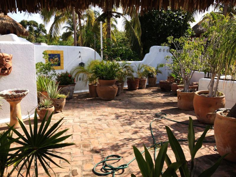 upstairs palapa terrace garden