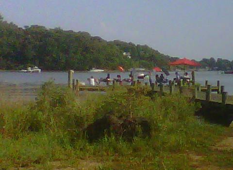 Dock activities