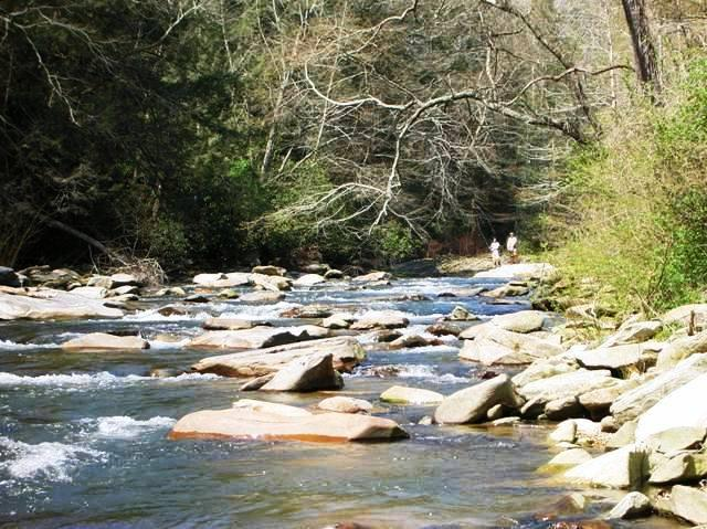Grist Mill River Cottage-On Rocky Broad River, FirePit. 3 mi from Lake Lure, NC, casa vacanza a Edneyville
