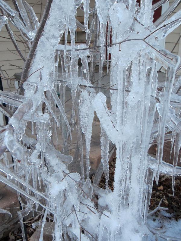 Ice Sculpture Art