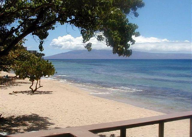Hale Kai #203 - Your Home by the Sea in West Maui, holiday rental in Lahaina