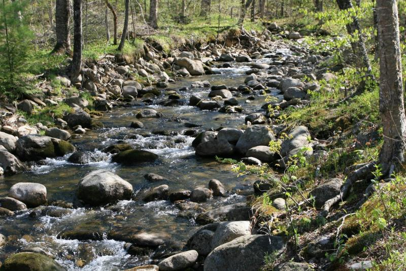 Great Brook in summer brings mountain breeze