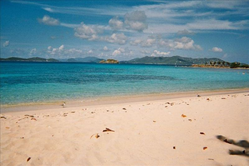 With St John in view, the NY Times calls Sapphire Beach the best on St Thomas