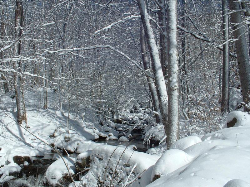 Neige à Laurel Creek...Belle !