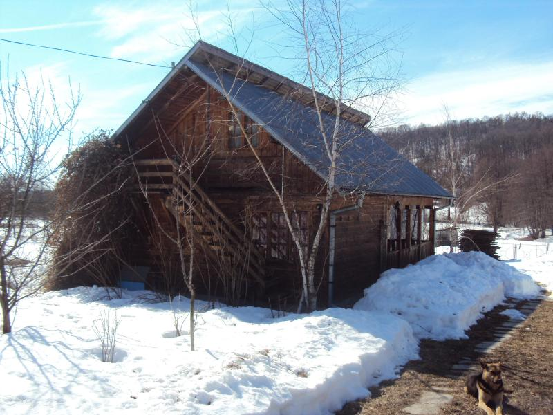 Log house for short term/long term holidays, holiday rental in Curtea de Arges