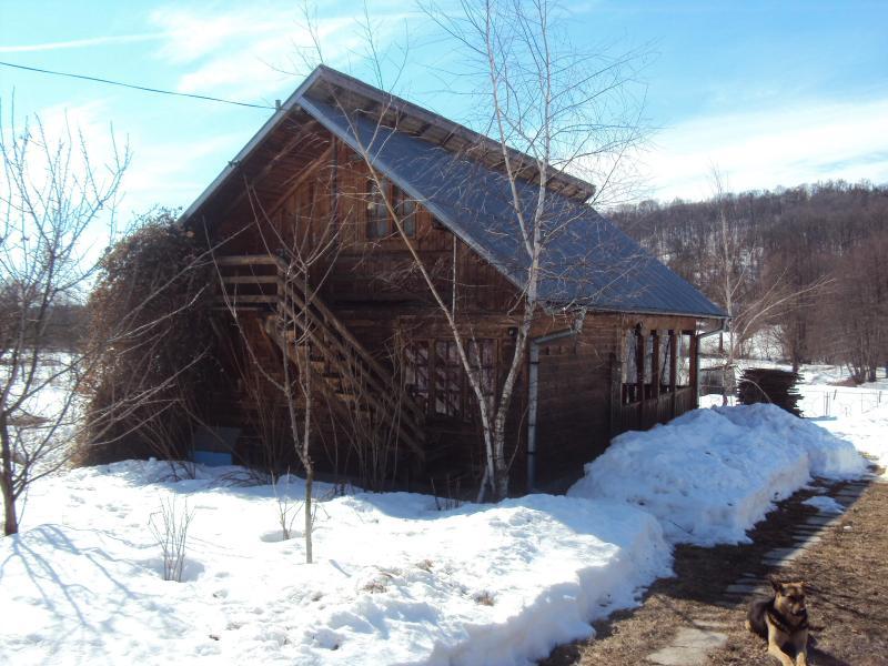 Log house for short term/long term holidays, location de vacances à Arges County