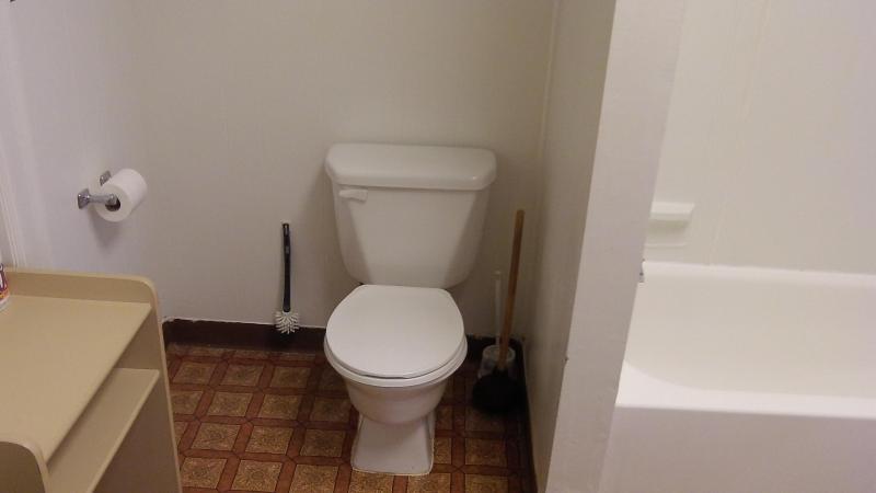 Vanity sink, toilet, shower
