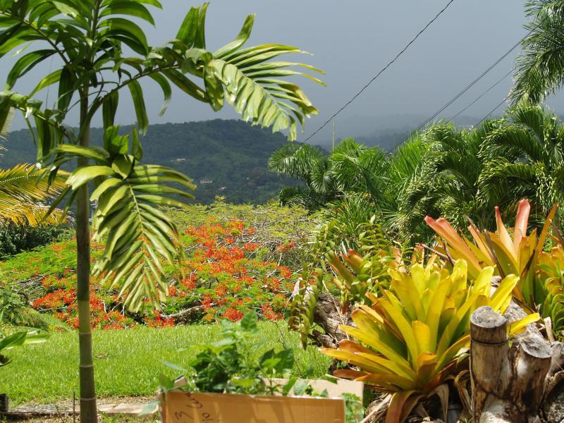 Vista desde la terraza de la Casita