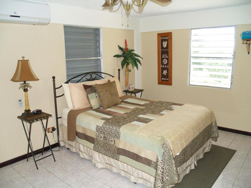 Master bedroom Queen size bed