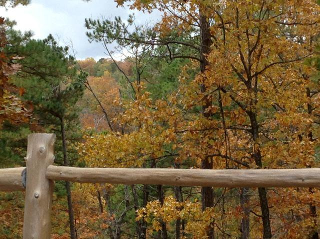 Autumn Colors in the Ozarks