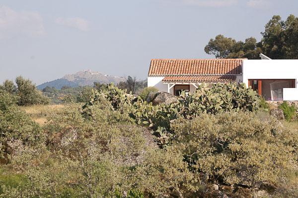 Casa Amor Perfeito Spa Quinta Serra de São Mamede, alquiler de vacaciones en Vila Velha de Rodao