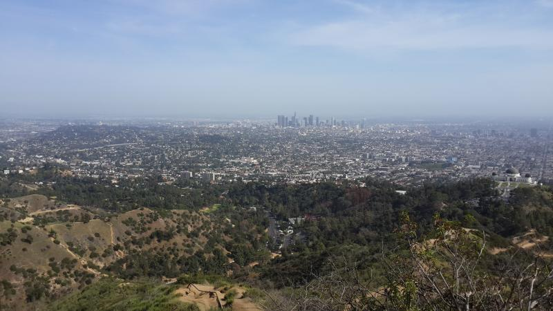 Griffith Park -- countless hikes and nature walks, close by (5 minutes in car and 20 minutes walk)