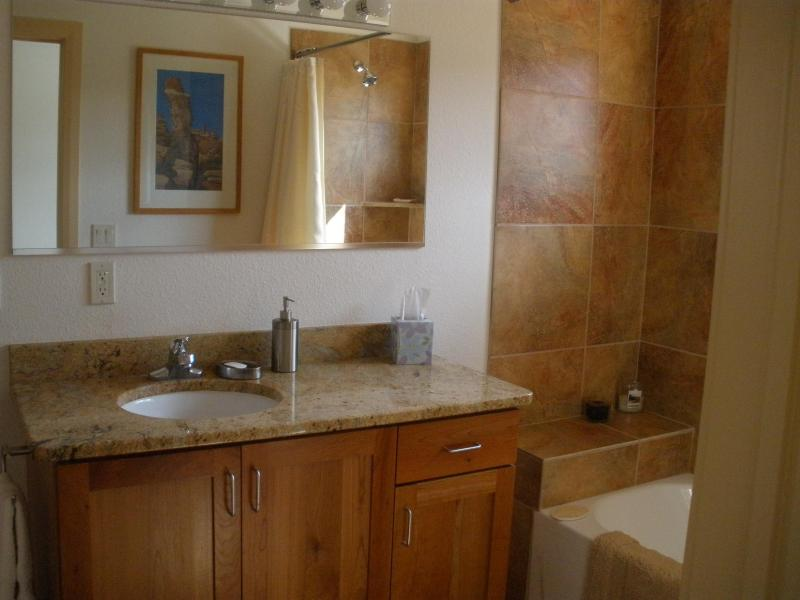 Guest bathroom vanity with tub/shower to right