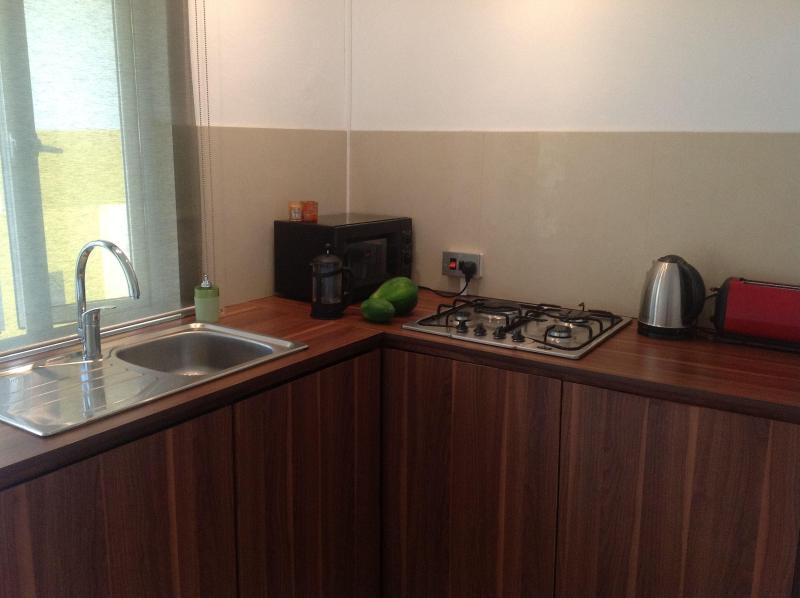 Todos Beautique estudios disponen de una cocina bien equipada privada
