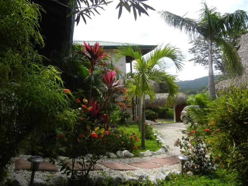 View of the grounds and entrance gate to Paloma Azul