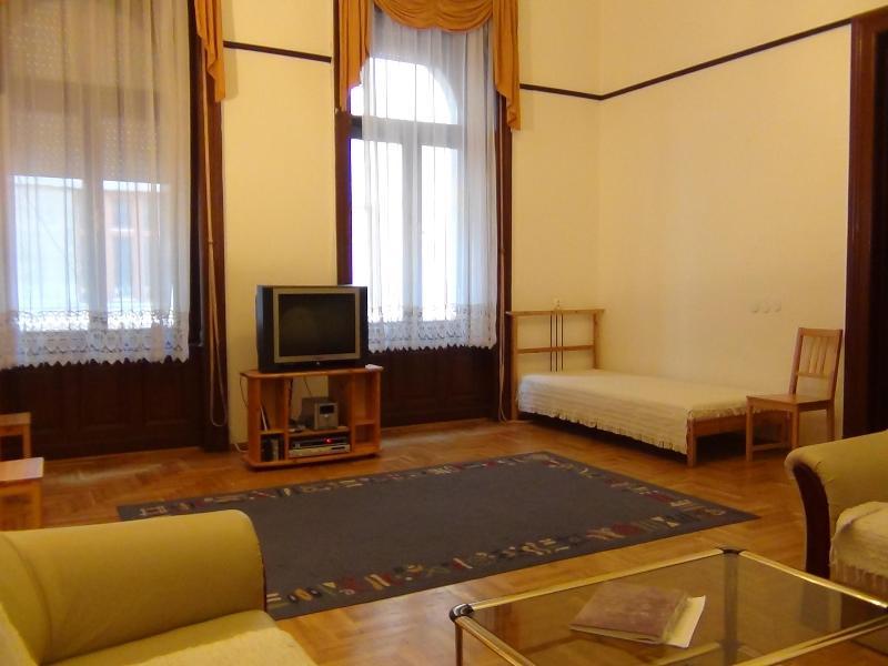 living room photo1