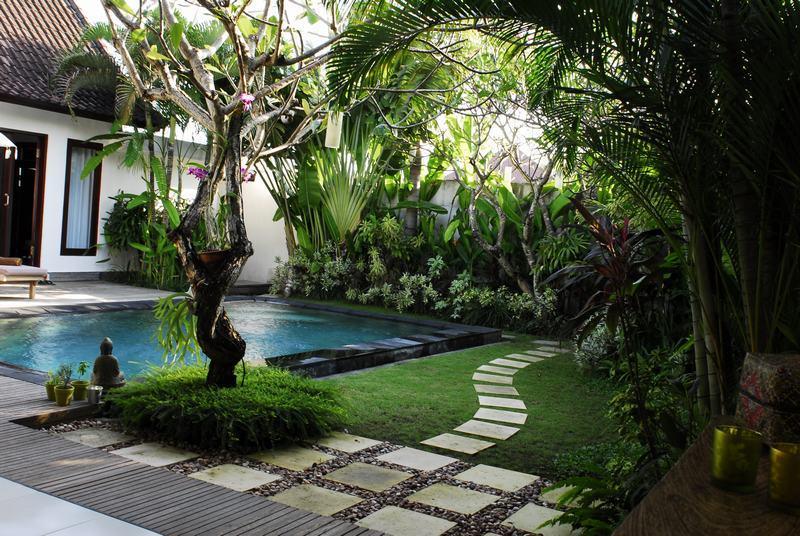 Garten gesehen aus dem Esstisch