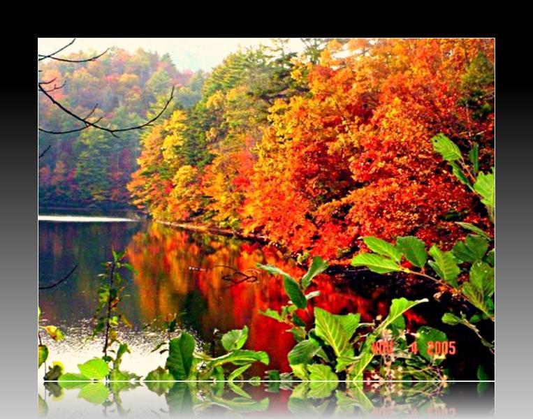 cadere sul lago Santeetlah-
