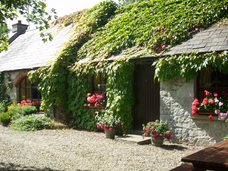 Coolbeg Lodge, charming country cottage near Adare, holiday rental in Gorteen