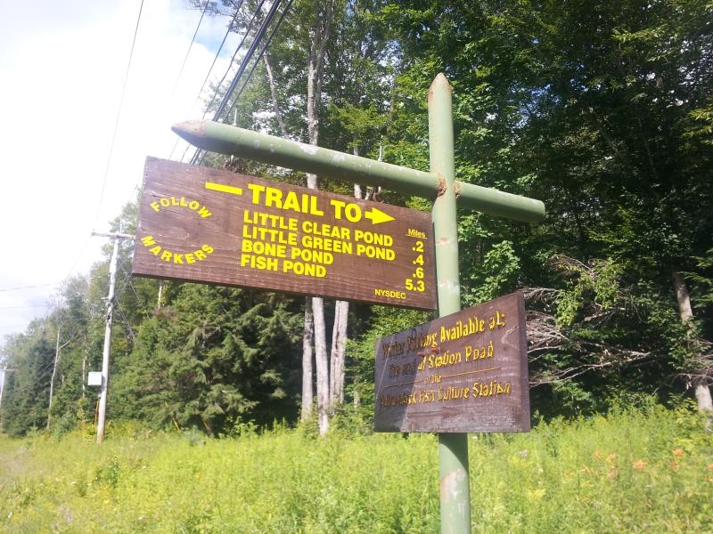 Trailhead directly across from cabin
