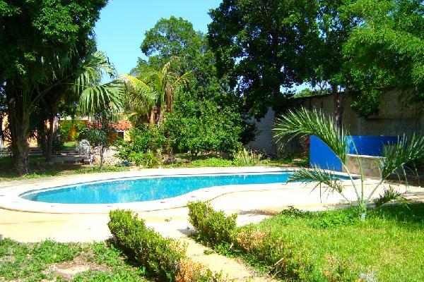 Enjoy almost 700 m2 of garden, pool and relaxing and private place.
