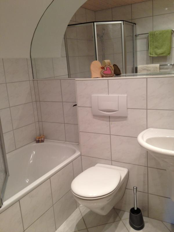 El baño es limpio, con todo lo que necesitas.