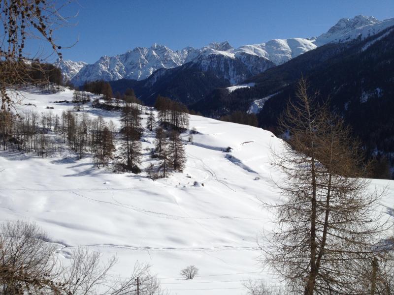 A pie de invierno de Guarda de Bos-cha