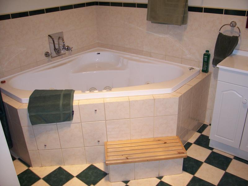 Baño principal con 2 persona spa, ducha, tocador y WC