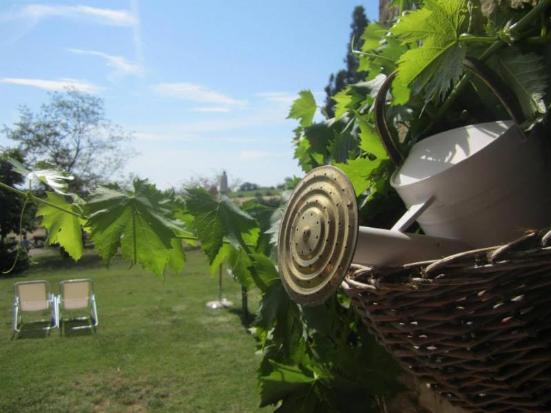 Sunbeds in the garden