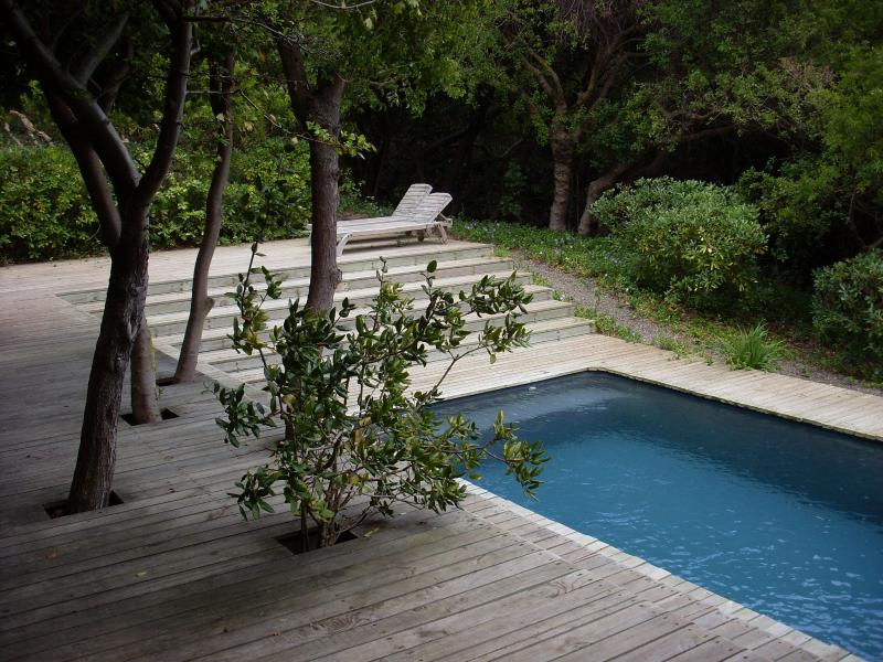 secluded pool in 1 hác garden