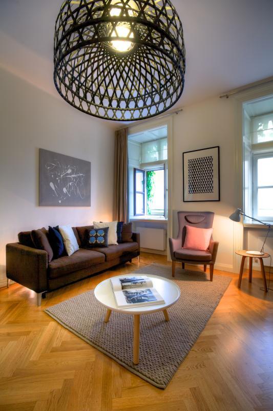 Appartement 1 chambre - coin salon