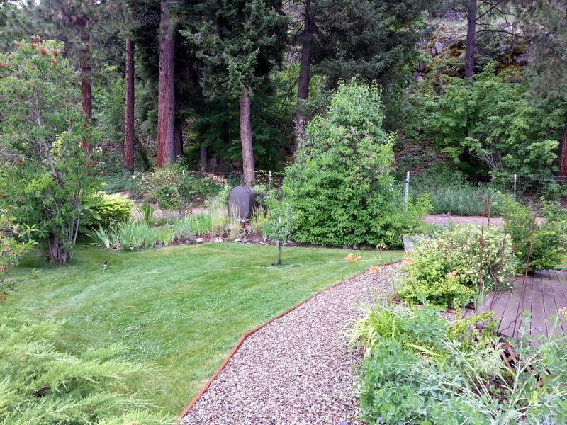 Guest house yard and garden path