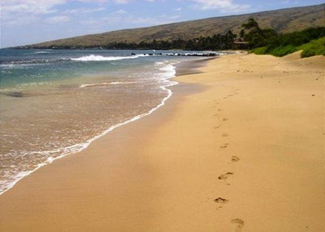 Kana'i A Nalu  Oceanfront