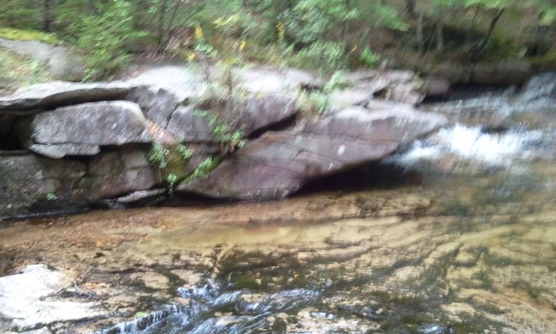 One of many nearby brooks with crystal clear water that is ice cold even on the hottest days.