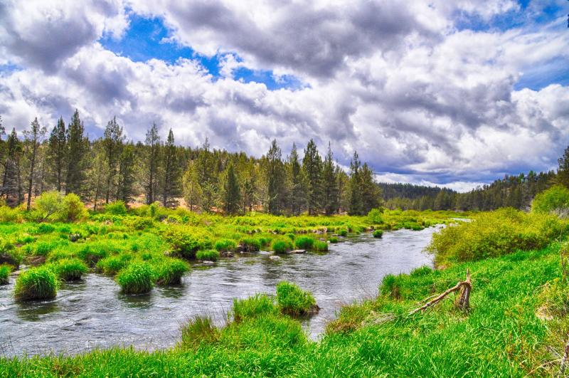 Hiking trail along the Deschutes River within the resort